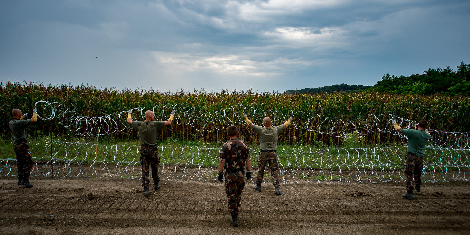 Hungarian soldiers are building razor barbed wire as they construct a 175 kms long temporary fence on Hungary's southern border with Serbia destined to halt illegal immigration into the country near Hercegszántó.